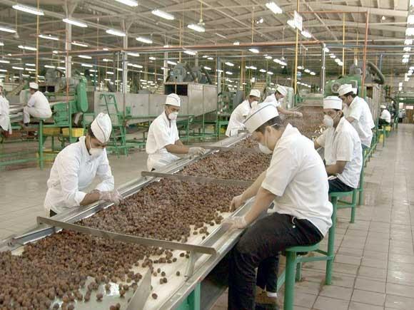 وظائف مؤقتة بمصنع تعبئة التمور بالأحساء