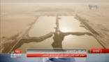 """""""قناة MBC"""" تستعرض مآسي المنيزلة والقرى المجاورة من مصب محطة معالجة الصرف الصحي"""