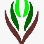 فتح باب التقديم في برنامج «الابتعاث الثقافي».. واستقبال الطلبات وفق 3 مسارات