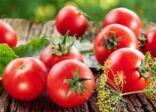 إطلاق منصة إلكترونية لتسويق المنتجات الزراعية العضوية للمزارعين