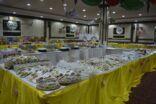 400 اسرة تشارك في نجاح الطبق الفاطمي الخيري لعامه (16)